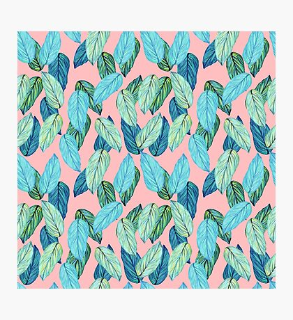 Tropical Leaves in Aqua and blue on coral Photographic Print
