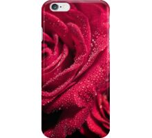 Water droplets on roses iPhone Case/Skin