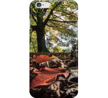 Fall beauty iPhone Case/Skin