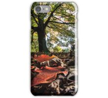 Fall beauty iPhone Case/Skin