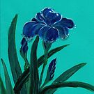 Blue Iris from Amphai by Baina Masquelier