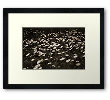 Is It An Art Form? Framed Print