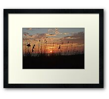 Sunset Serenity Framed Print