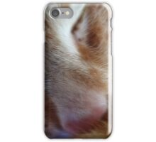kitty nose iPhone Case/Skin