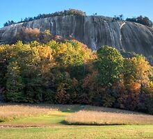 stone mountain | homestead/dome panorama by auroreye