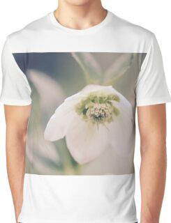 Winter Rose Graphic T-Shirt