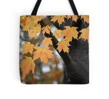 Hanging on to Autumn Tote Bag