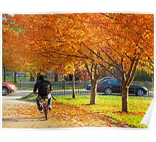 Cycling through Autumn, New York City Poster