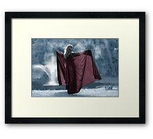 The Ice Princess Framed Print