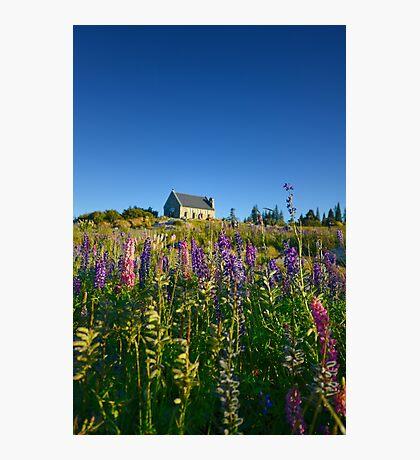 New Zealand Landscape 11 Photographic Print