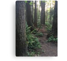 The Forest Canvas Print