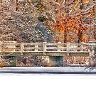 WHITE BRIDGE AFTER THE SNOW by RGHunt