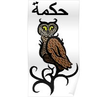 Psychedelic Owl Colour Poster