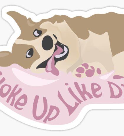Woke Up Like Derp Sticker