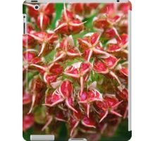 vibrant red iPad Case/Skin