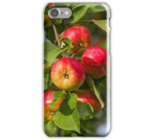 Garden apples iPhone Case/Skin