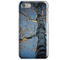 October Branches iPhone Case/Skin