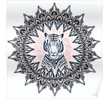White Tiger Sapphire and Rose Mandala Poster