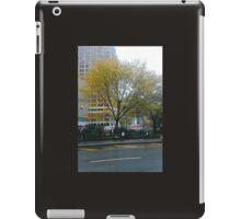 Autumn In New York iPad Case/Skin