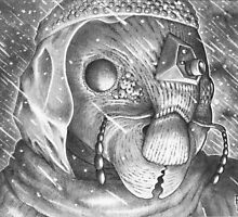 Storm Watchman Ganse Eyela by Pete Janes