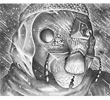 Storm Watchman Ganse Eyela Photographic Print