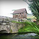 Le Moulin Des Chennevie'res..... The Bridge Outside by Larry Lingard-Davis
