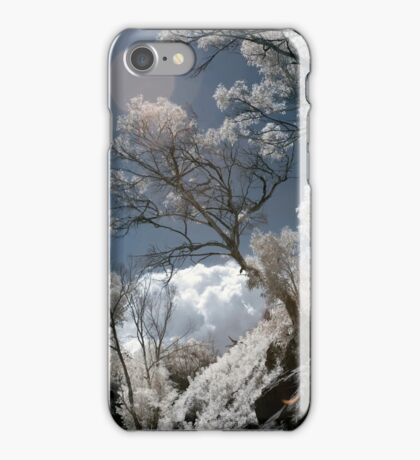 Infrared Tree with Lens Flare iPhone Case/Skin