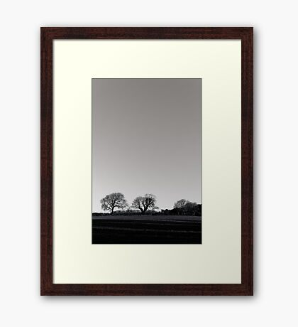 black and white trees in the countryside Framed Print