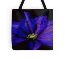 Beauty in the Night Tote Bag