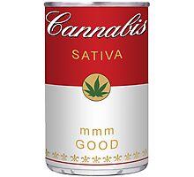 Cannabis Sativa Photographic Print
