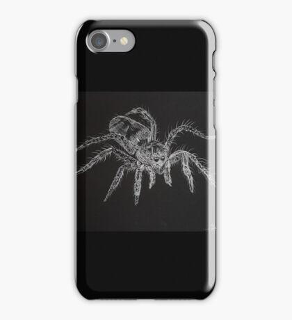 Zebra spider (Salticus scenicus) by Liz H Lovell  iPhone Case/Skin