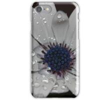 White wet Dasiy iPhone Case/Skin