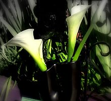 Gothic Callas by Michael May