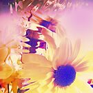 Floral Abstract by SexyEyes69