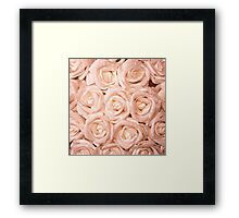 gorgeous roses peach Framed Print