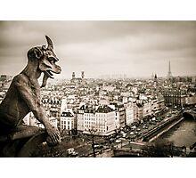 Gargoyles of Notre-Dame Photographic Print
