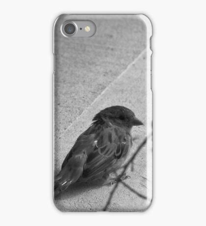 Birb iPhone Case/Skin