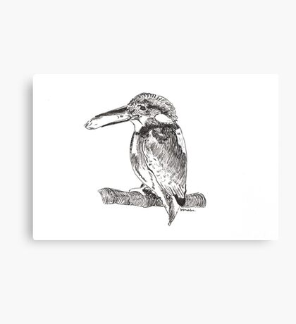 Pen and Ink Kingfisher Canvas Print