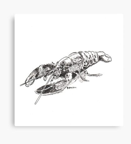 Pen and Ink Lobster Canvas Print