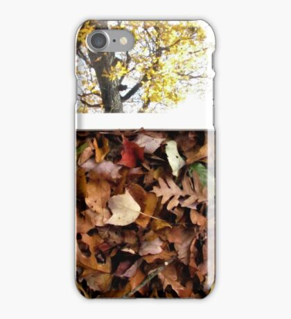 Who's the Fairest? iPhone Case/Skin