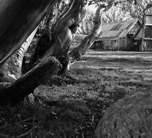 Wallace's Hut by Paul Peach