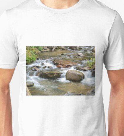 Chimney Creek Unisex T-Shirt