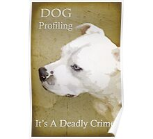 Dog Profiling Poster