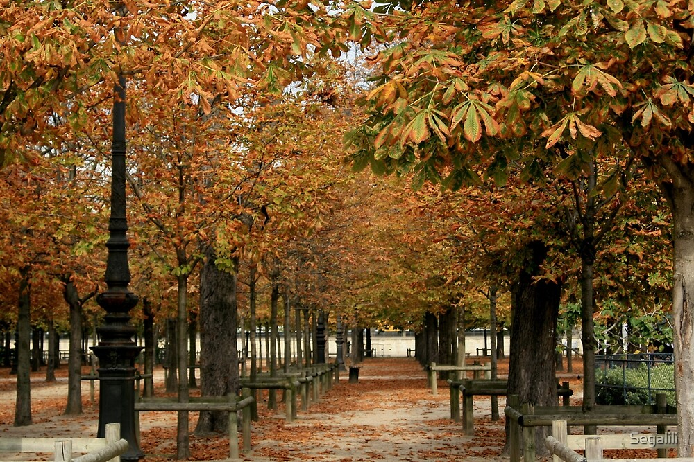Autumn Colors in the Tuileries Garden by Segalili