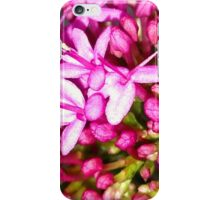 Dainty Pink Flower iPhone Case/Skin