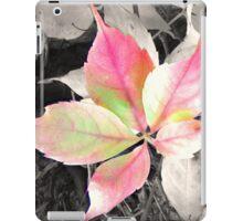 Autumn Leaf iPad Case/Skin