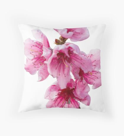 isolated peach blossom Throw Pillow