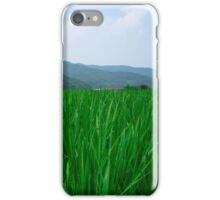 Summer Rice Fields in Gyeonggi Province, South Korea iPhone Case/Skin