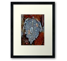 canadian dew Framed Print