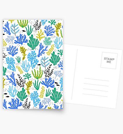 Marine life, seaweed illustration Greeting Card